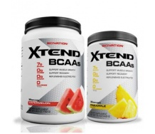 Xtend Intra-Workout Catalys